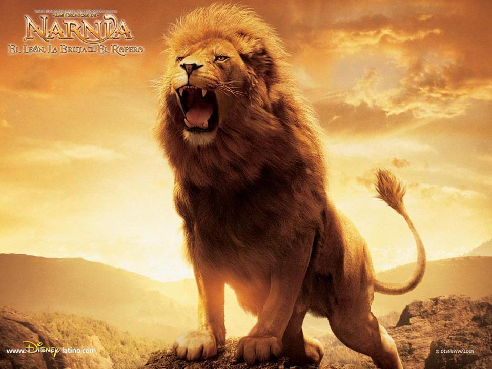 Lion Of The Tribe Of Judah Mere Christian